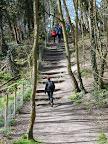 Therfield Heath 4.jpg