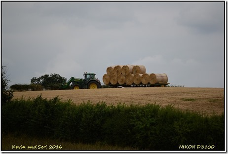 Draycote - August