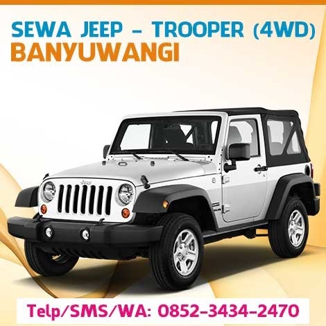 Sewa Rental Carter Jeep Trooper Sukamade Banyuwangi