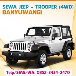 Sewa Jeep ke Pantai Sukamade Banyuwangi