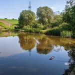 20140524_Fishing_Bronnyky_016.jpg