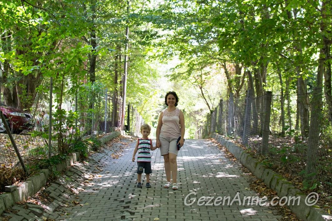 Polonezköy, tabiat parkına giden yolda