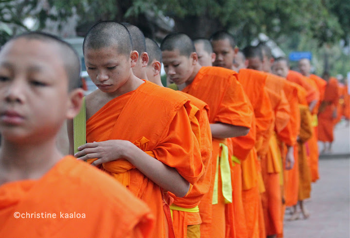 monks taking alms in laos, buddhism in southeast asia, religion in southeast asia, young monks
