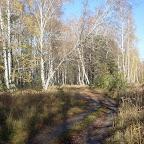 Озеро Круглое Подгоренский район 019.jpg