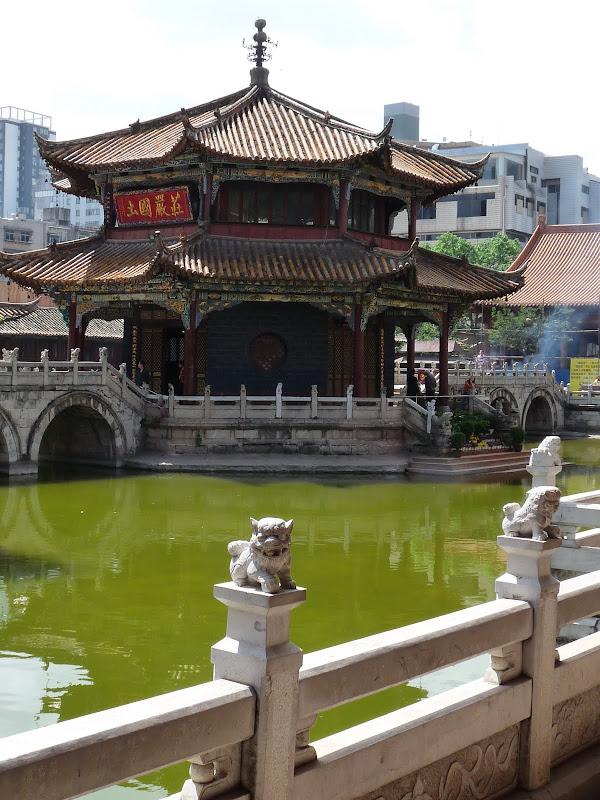 Chine .Yunnan . Lac au sud de Kunming ,Jinghong xishangbanna,+ grand jardin botanique, de Chine +j - Picture1%2B239.jpg