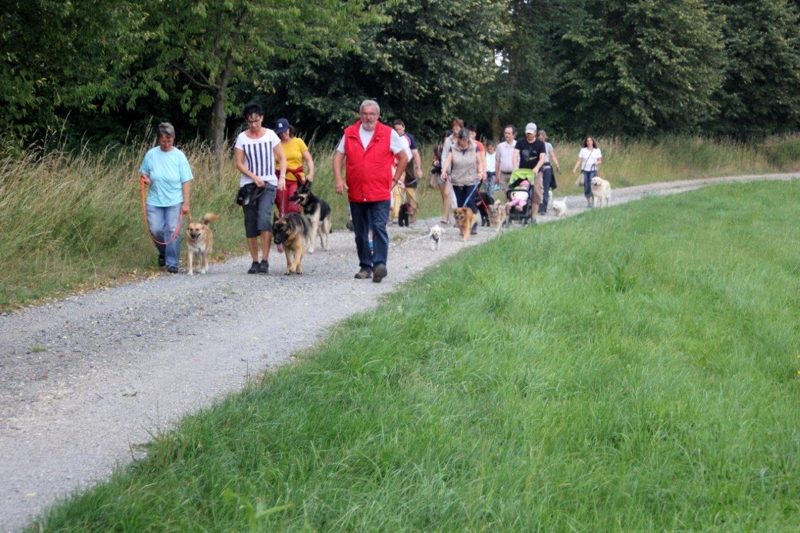On Tour in Speinshart: 4. August 2015 - Speinshart%2B%252814%2529.jpg