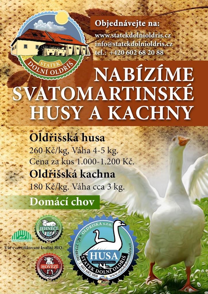 savatomartinska_hua_kachna_rijen_2013_004