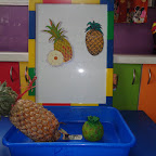 Introduction of Pineapple (Playgroup) 11.08.2015