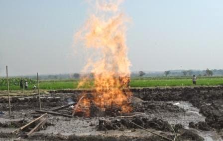 berita terkait kebakaran di ngawi