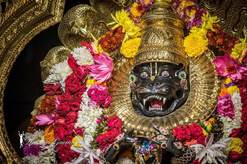 ISKCON Mayapur Deity Darshan 31 Dec 2016 (35)
