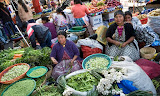 More than half a million could die as climate change impacts diet - report