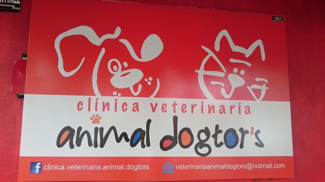 Clinica Veterinaria Animal Dogtor S Hospital Veterinario