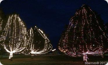 Lights at the lake 2