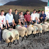 Winners of the Pen of 2 Aged Sheep (Confined) at the 21st Achill Sheep Show (Taispeántas Caorach Acla 2007) at Pattens Bar, Derreens Achill were from left 1st Finbarr and Thomas Gallagher; 2nd Mark Gallagher and Paul Davitt; 3rd Andrew Dever and Steve O'Malley and 4th Peter and Peter (jnr) O'Malley and Martin Calvey. Photo: © Michael Donnelly