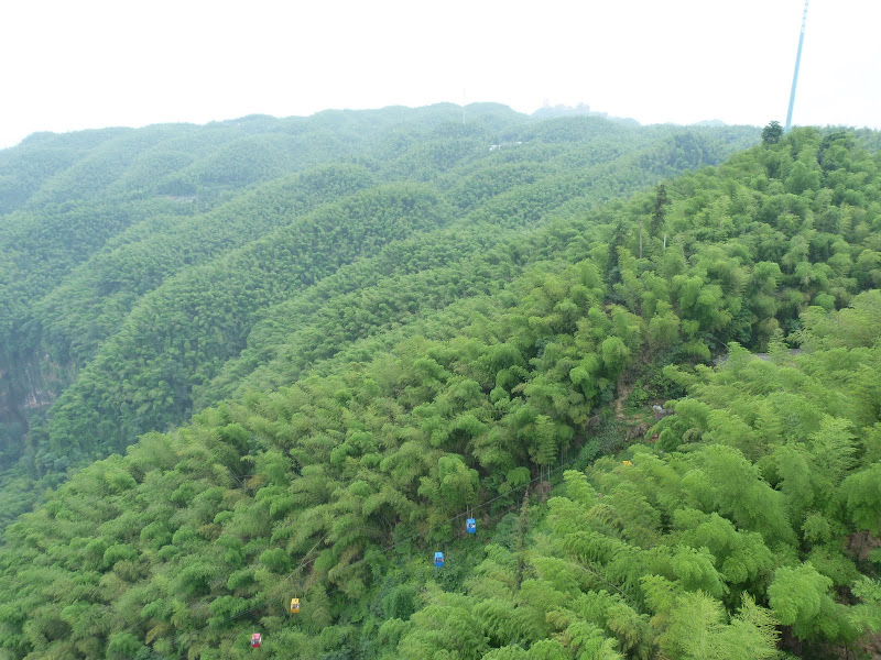 CHINE.SICHUAN.YIBIN, et la mer de Bambous - 1sichuan%2B533.JPG