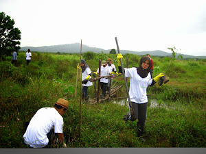 Maybank2U.com Peat Swamp Tree Planting (CrE)