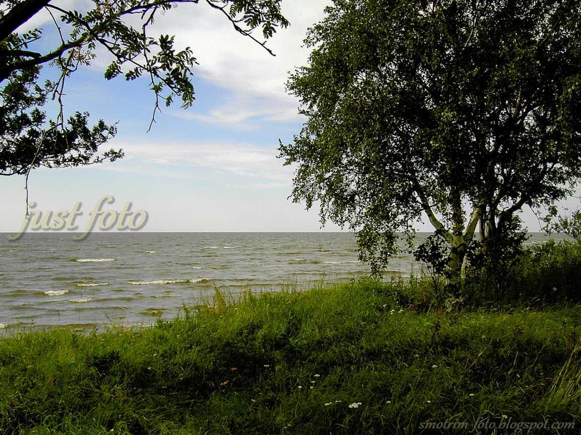 Чудское озеро фото