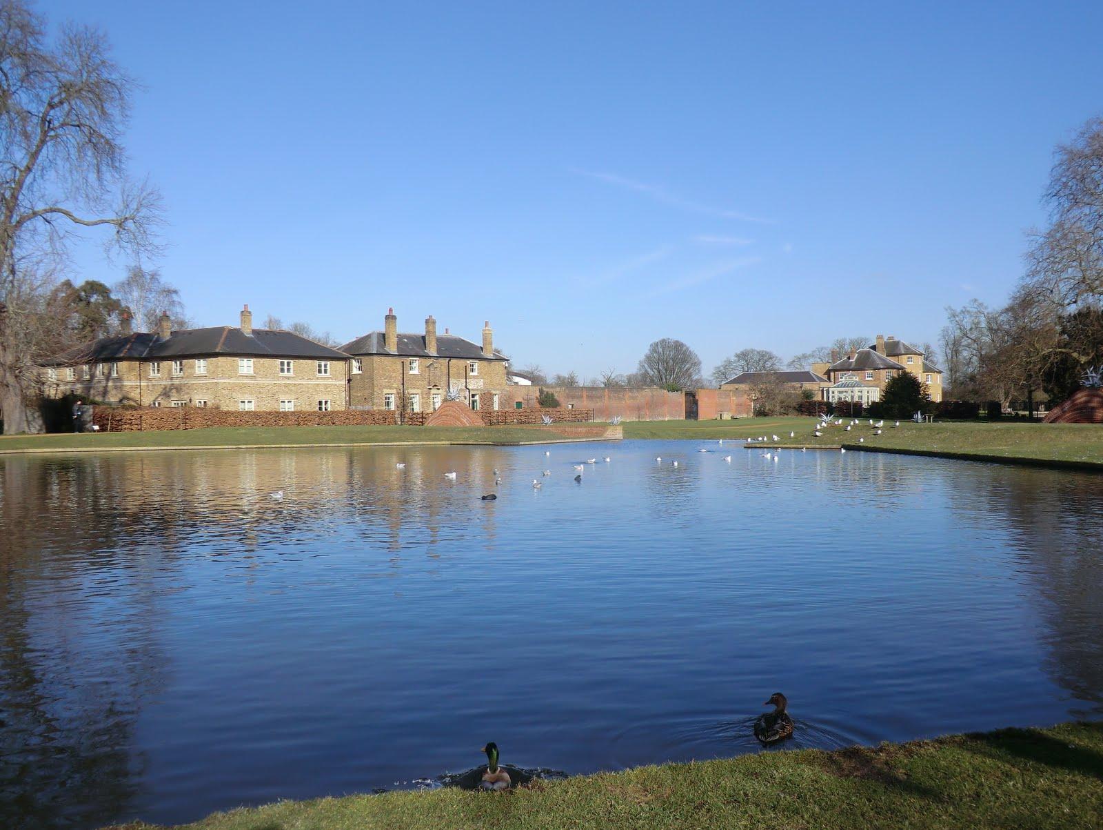 CIMG6773 Upper Pond, the Water Gardens