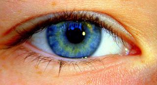 Elizabeth Taylors eyes