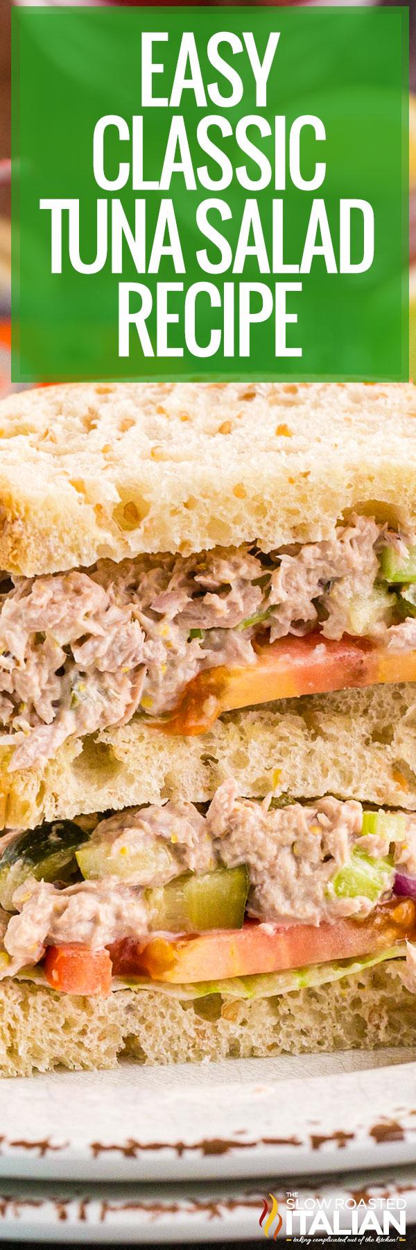 Tuna Salad Recipe close up