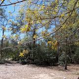 Burroughs Park - 101_0184.JPG