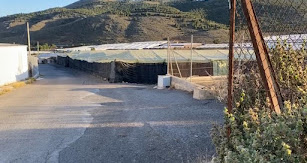 Camino de Cortijo Grande.
