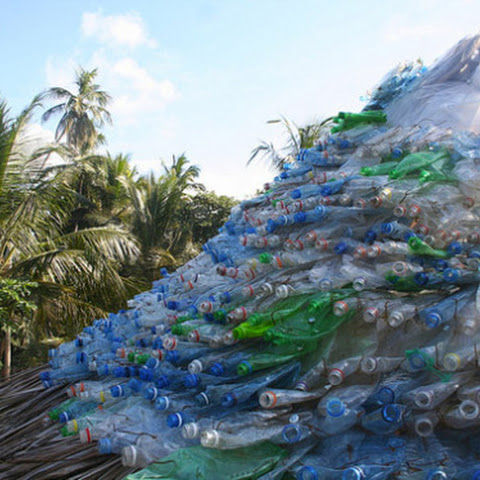 Squashed plastic bottle roof.