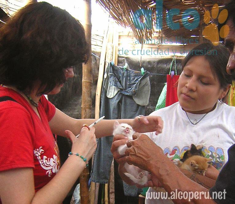 Asistencia Hualcara Cañete terremoto 2007 (18)