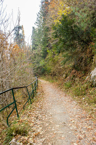 Colors of Autumn on the Pipeline trek, Galiyat