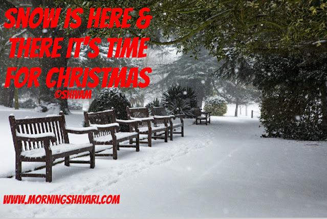 Christmas Tree, Christmas, Santa Claus, Church, Christmas Carrol, 25 december, Winter, Snow Man, Festival,