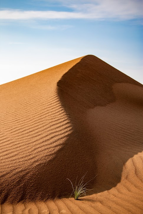 Oman, pustynia, wydmy