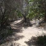 Track down to Bournda Lagoon (106684)