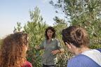 אליענה מסבירה ומסמנת את עצי האורן שנשארים