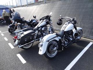 2016.04.17-073 Harley Davidson