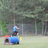 ATM Cup Sporthunde Franken - ATM%2BCup%2BSporthunde%2BFranken%2B455.JPG
