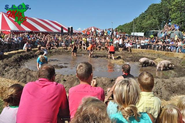 Dicky Woodstock 2013 - Dicky%2BWoodstock%2Bmiddag%2B03-08-2013-008.JPG