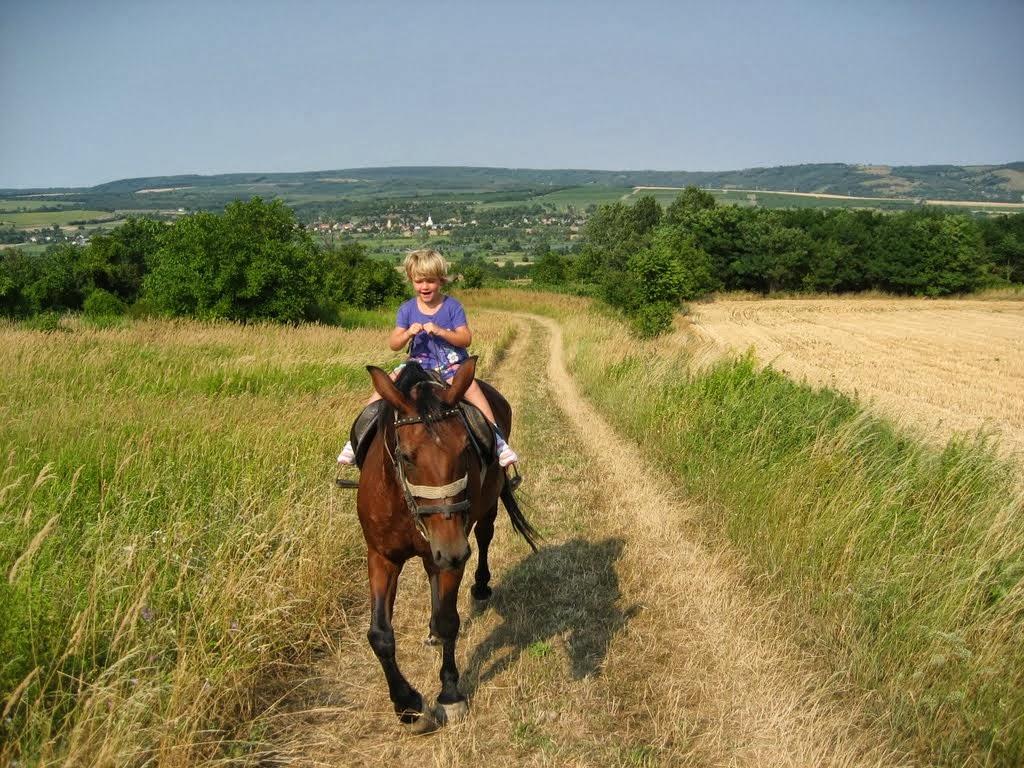 paardrijden 002