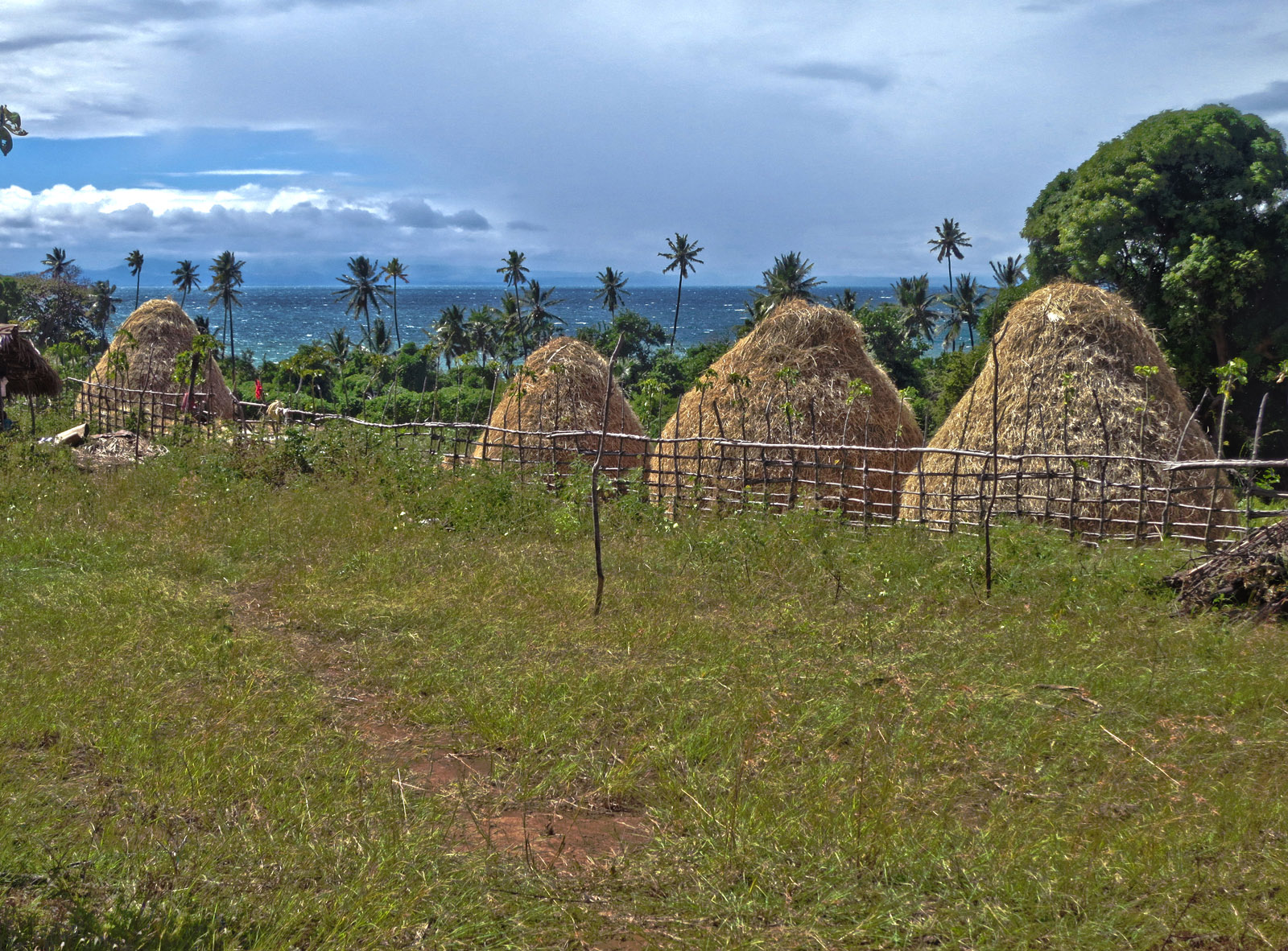 Madagascar9-072.jpg