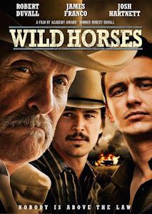 Ngựa Hoang 18+ - Wild Horses 18+ poster