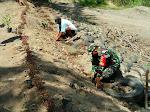 Kodim Bantul Hijaukan Bantaran Sungai Progo