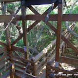 04-06-12 Myaka River State Park - IMGP9893.JPG