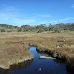 Crossing Boggy Plain Creek (268973)