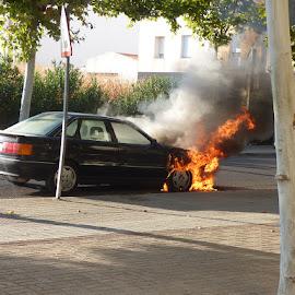Incendio vehículo en Avda. Colón