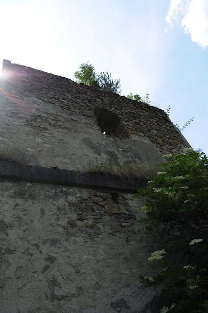 W Polanach Surowicznych - 18.06.2011_048.jpg