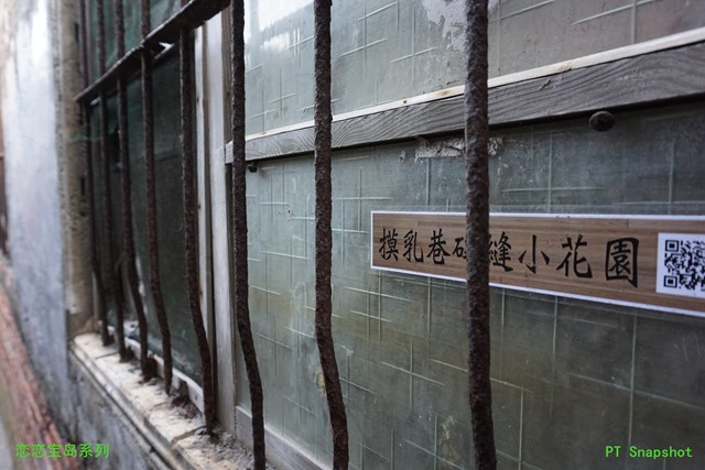 摸乳巷墙缝小花园