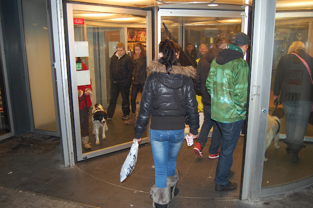Jonge Hond centrum Emmen - 2012-04-01%2B041.JPG