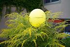 Ding-Thema: Luftballon