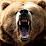 """Michael """"Grizzly"""" Bear's profile photo"""