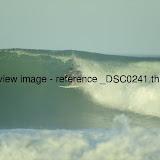 _DSC0241.thumb.jpg
