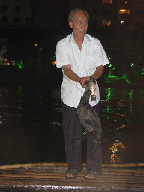 Cormorant Fishing during the Li River Night Cruise